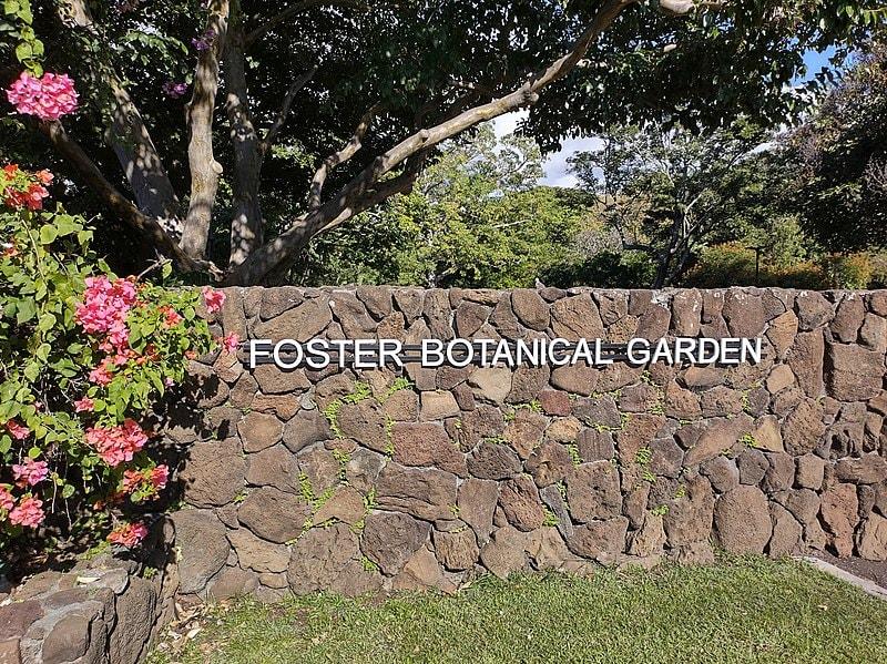 Foster Botanical Garden Entrance - Hawaiianly