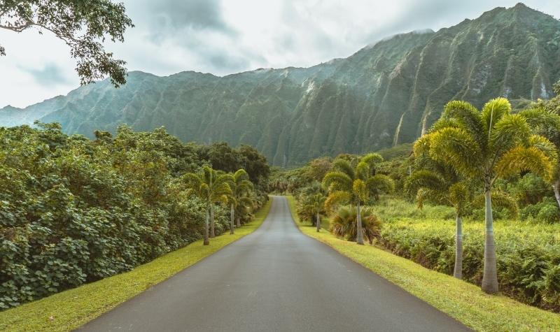 Amazing views near Ho'omaluhia Botanical Garden