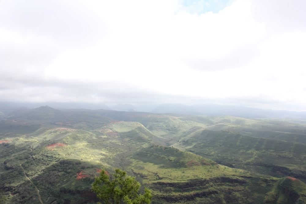 Waimea Canyon State Park on Kauai - Hawaiianly
